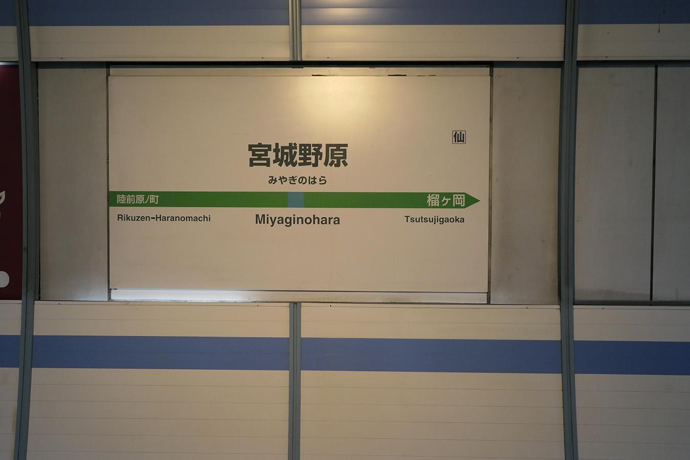senseki04_photo03.jpg
