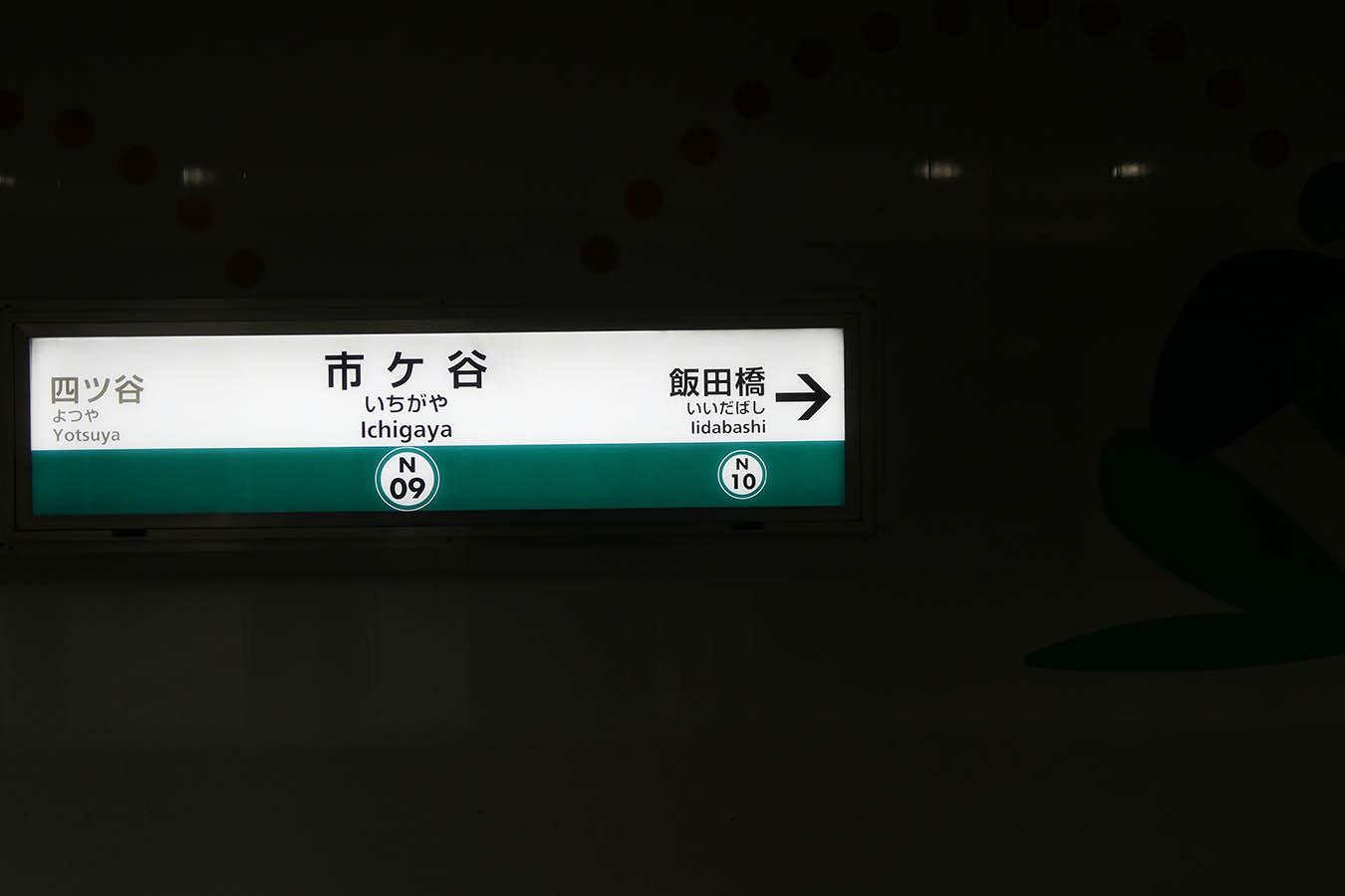 N09_photo04.jpg