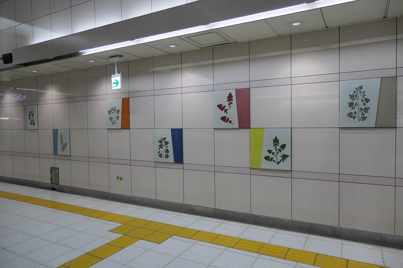 N11_photo08a.jpg