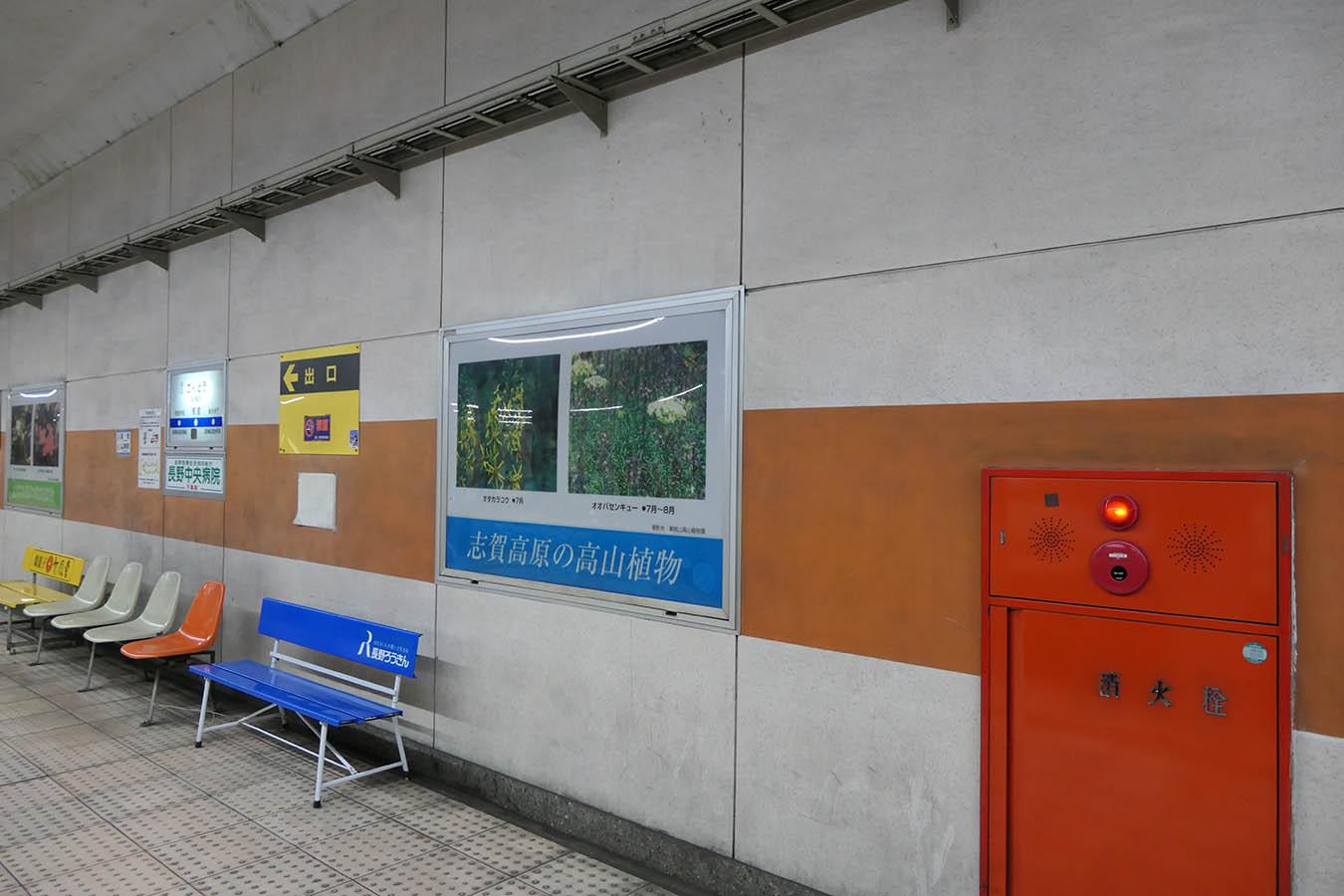 NAGANO-N3_photo01.jpg