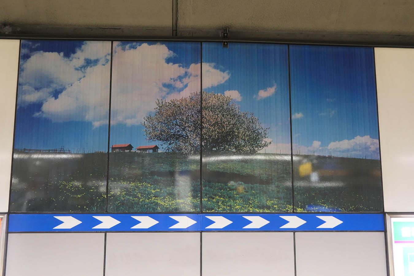 SO14_photo07a.jpg