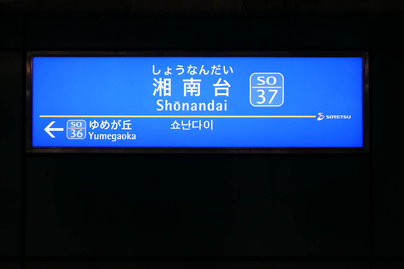 SO37_photo06.jpg