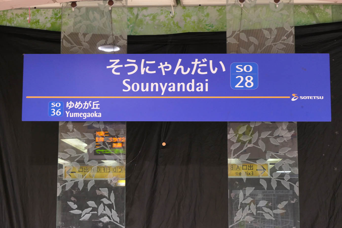 SO37_photo09.jpg