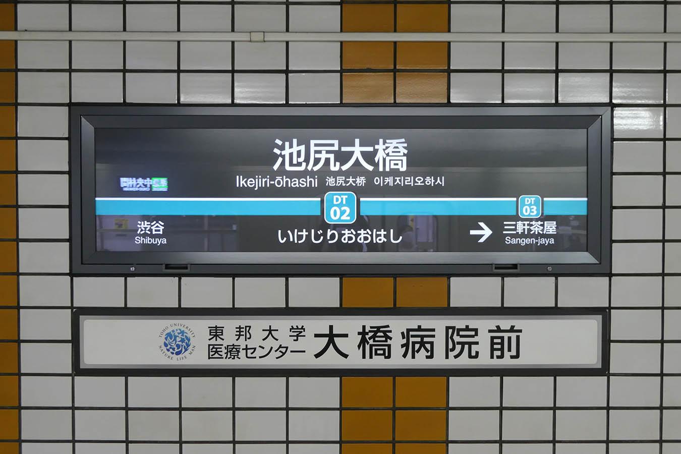 DT02_photo04.jpg