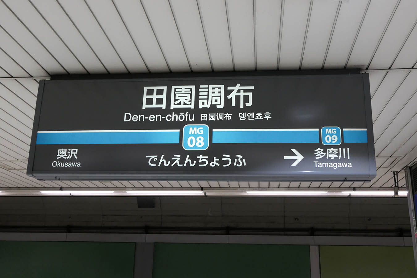 MG08_photo04.jpg