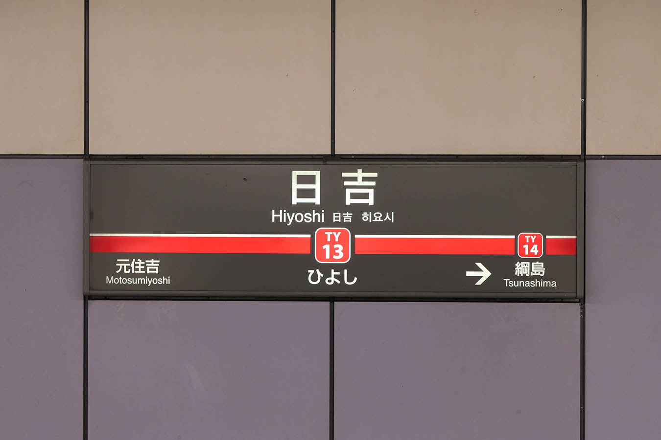 MG13_photo06.jpg