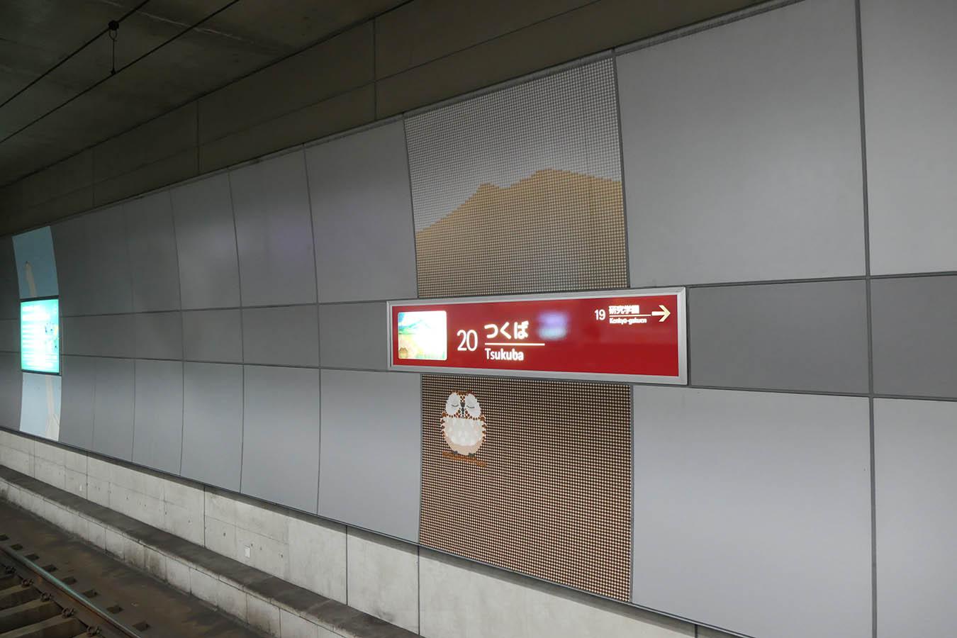 TX20_photo01.jpg