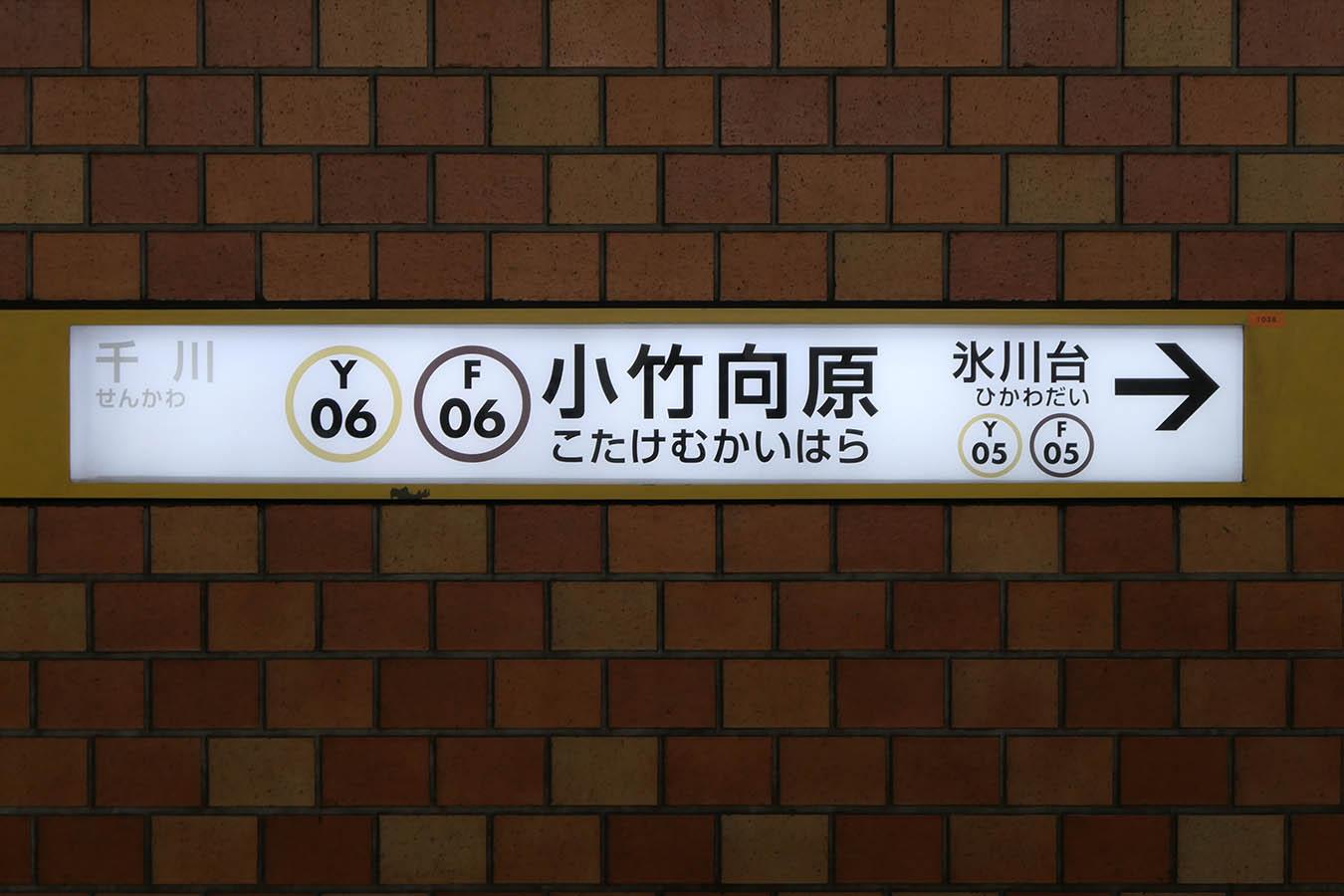 Y06_photo06.jpg