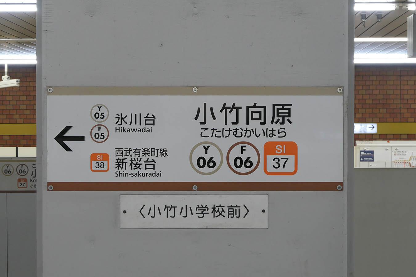 Y06_photo07.jpg