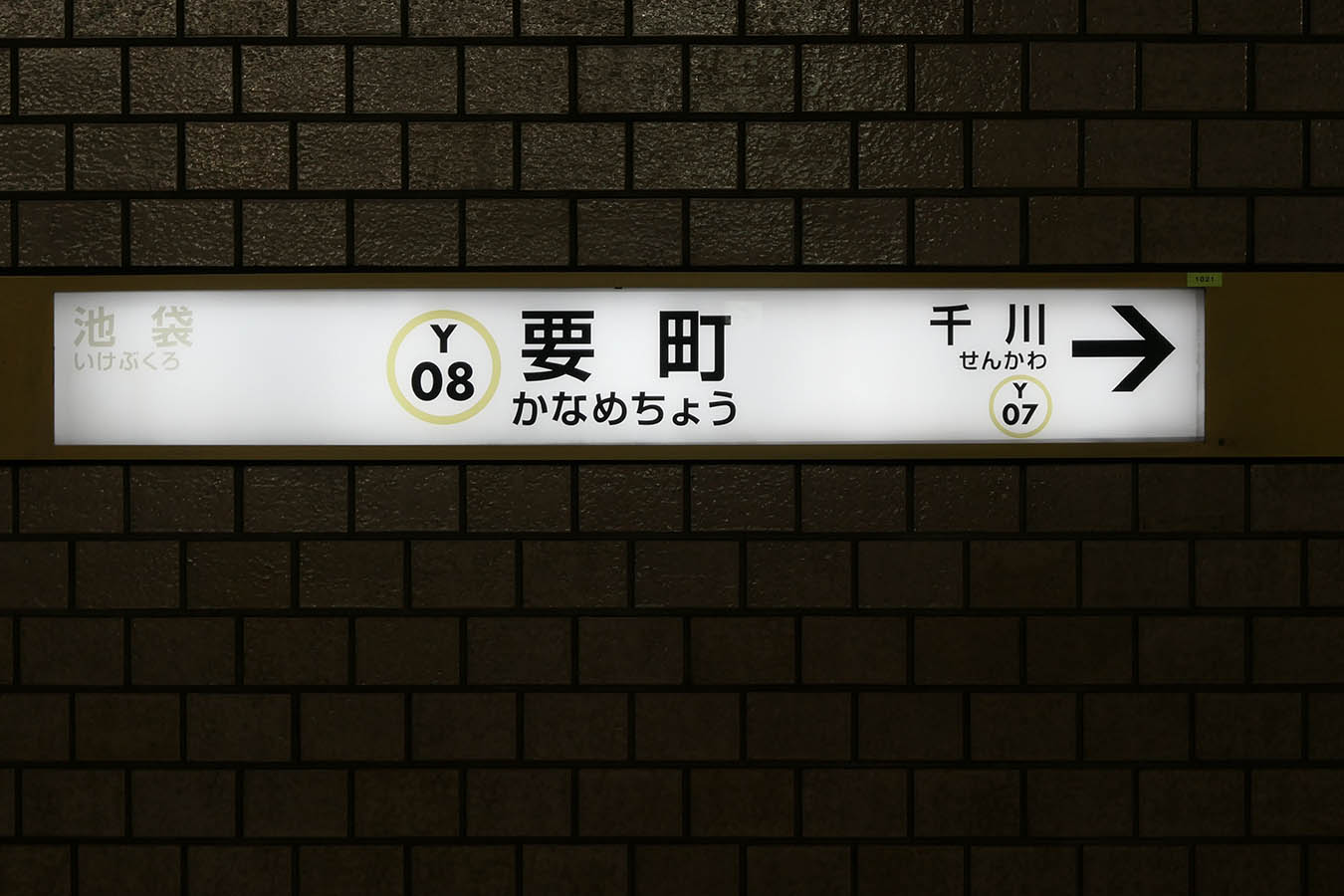 Y08_photo05.jpg