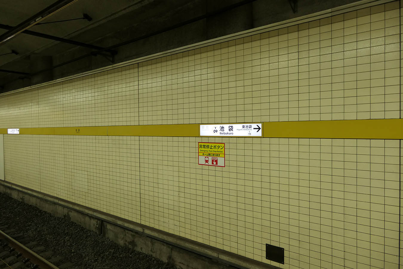 Y09_photo01.jpg