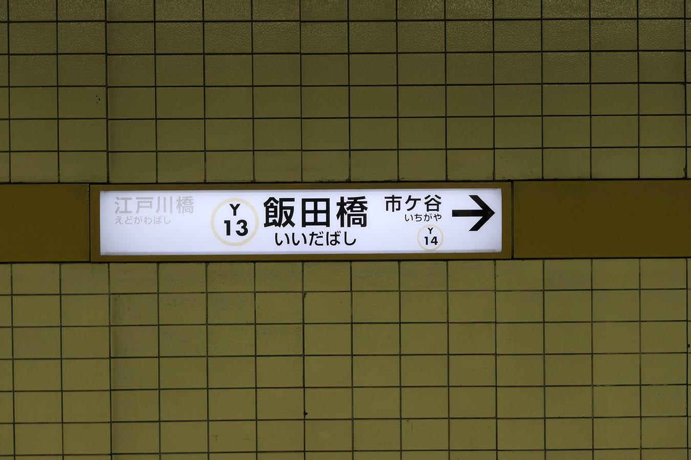 y13_photo04.jpg