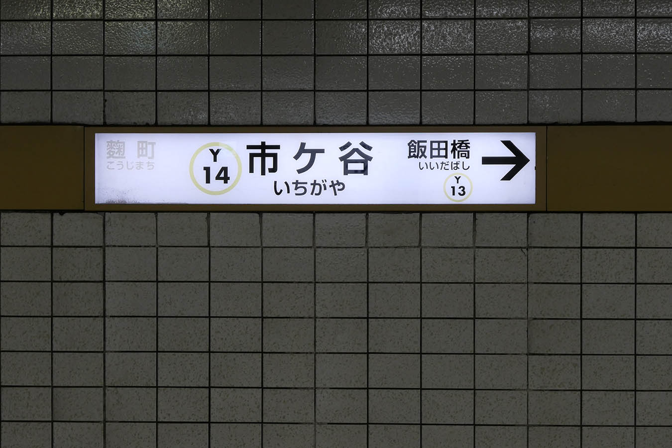 Y14_photo03.jpg