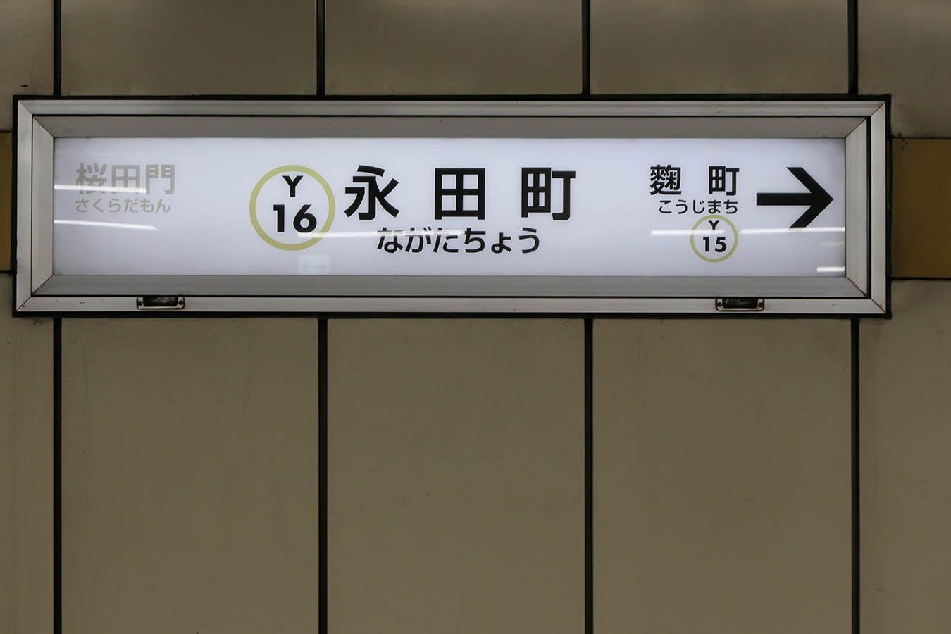 Y16_photo05.jpg