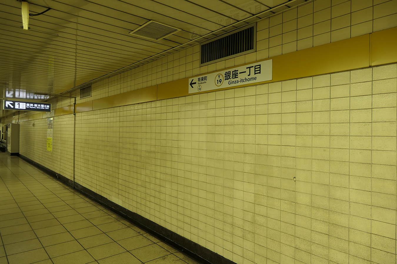 Y19_photo02.jpg