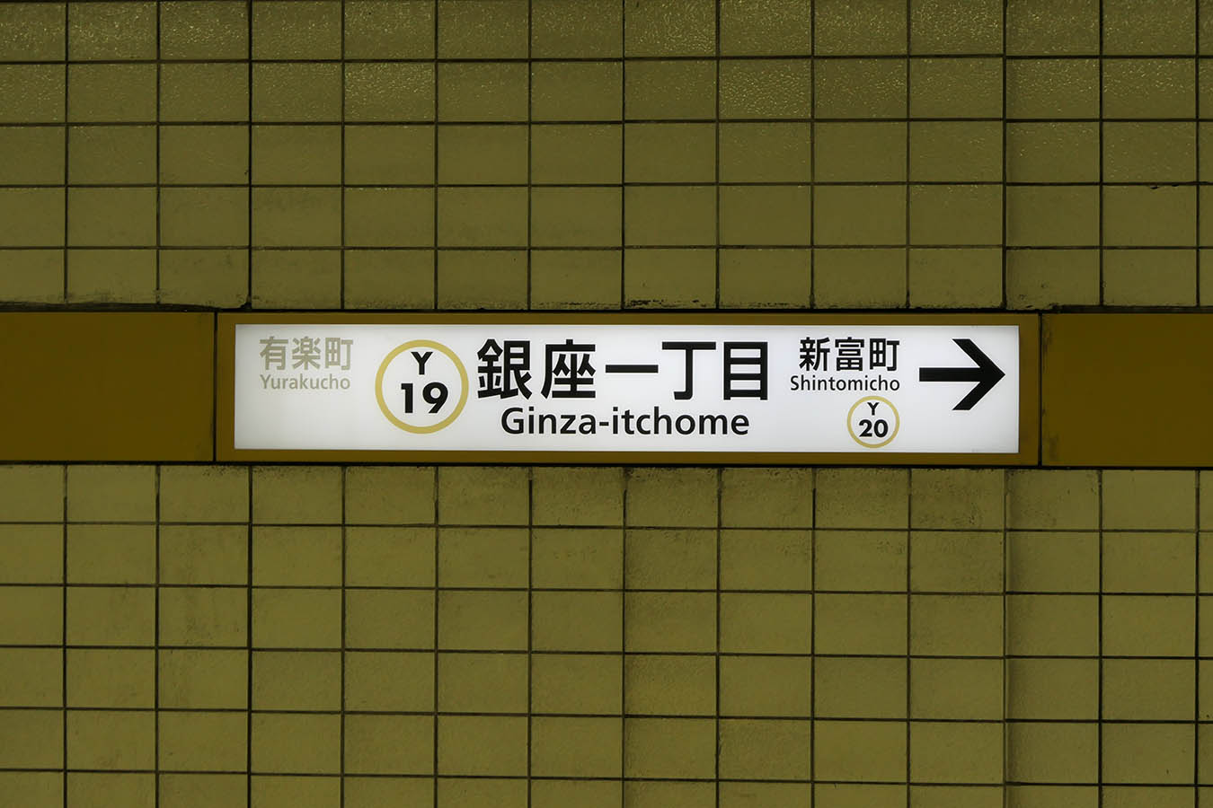 Y19_photo06.jpg