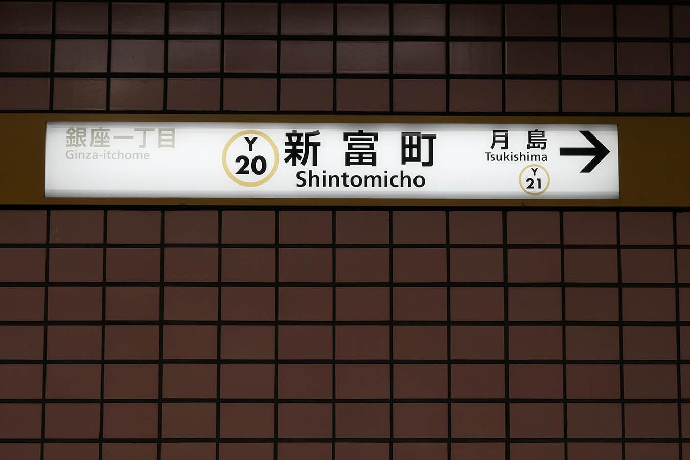 Y20_photo07.jpg