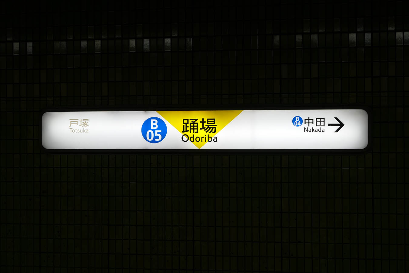YMS-B05_photo04.jpg